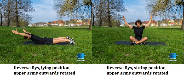 Reverse flys outwards rotated