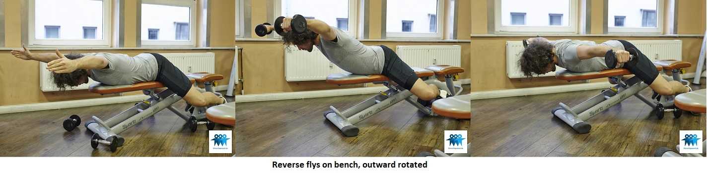 Reverse flys on bench, outward rotated