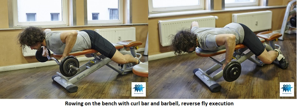 Rowing, on the bench with barbell