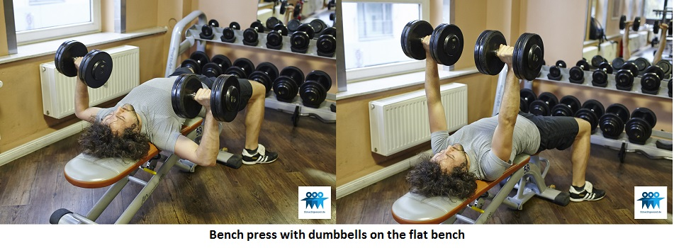 Bench press with dumbbells on the flat bench